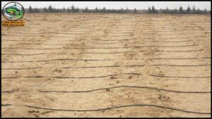 خواص الأراضي الرملية وتحسينها