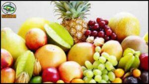 فيديوهات محاصيل الفاكهة